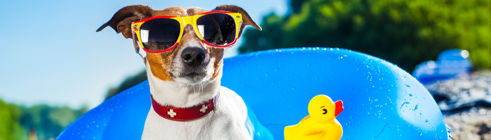 summer hvac tips to stay cool